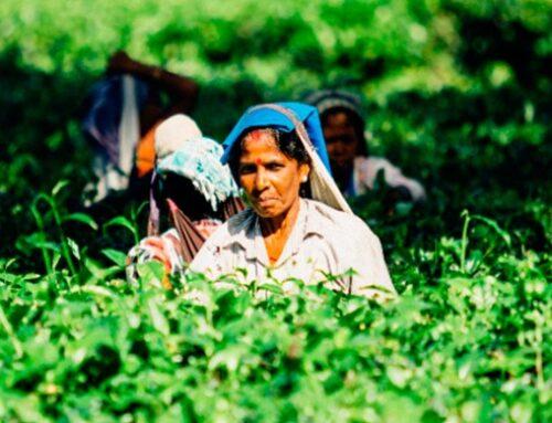 """Se realizó el primer encuentro """"América Latina y África. Mujeres, tierra y trabajo"""" organizado por el CIPDH-UNESCO"""